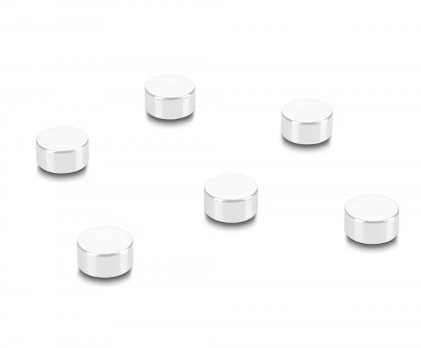 Kraft-Magnete Rheita für Glas-Magnettafel - 6 Stück