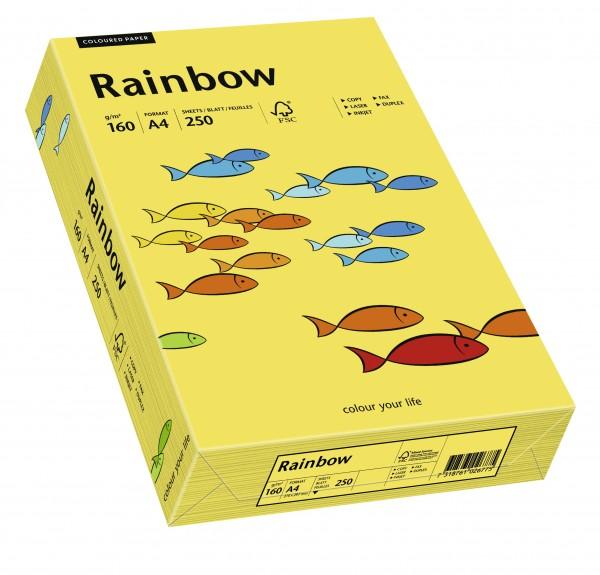Kopierpapier PAPYRUS Rainbow 160 Intensivfarben