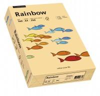 Kopierpapier PAPYRUS Rainbow 160 Pastellfarben